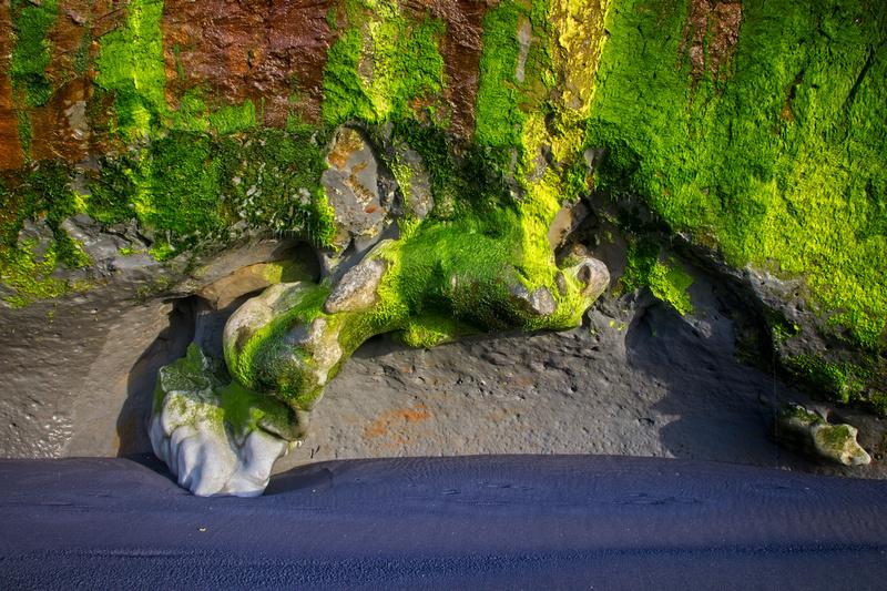 Strange rock formations at Tongaporutu.